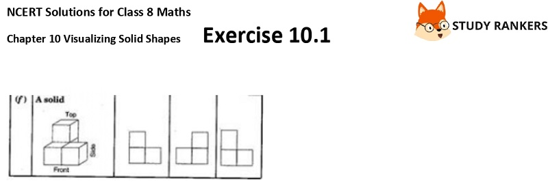 NCERT Solutions for Class 8 Maths Ch 10 Visualizing Solid Shapes Exercise 10.1 5