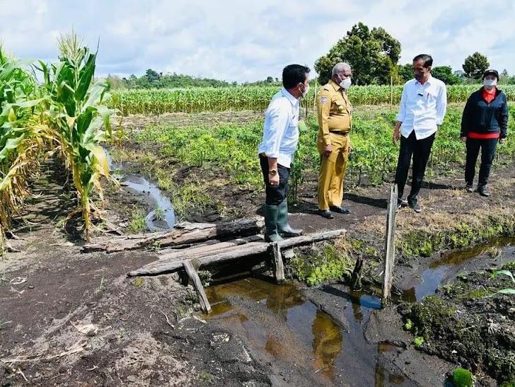 Syahrul Yasin Limpo, Potensi Pertanian di Tanah Papua Sorong Sangat Besar