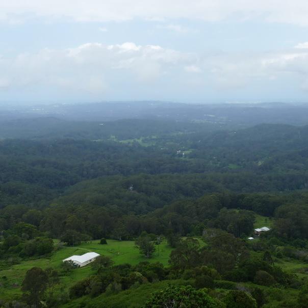 Hinterland Sunshine Coast Regenwald Landschaft Hügel