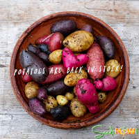SEED POTATOES ARE BACK IN STOCK!