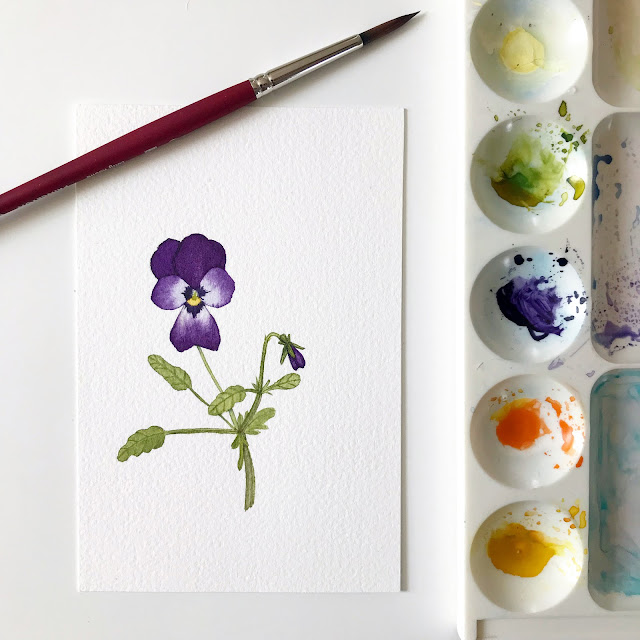 watercolor, botanical watercolor, violas, spring, garden, joy, Anne Butera, My Giant Strawberry