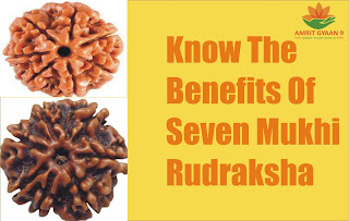 Know The Benefits Of Seven Mukhi Rudraksha