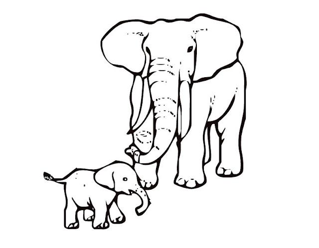 Mẹ và con voi