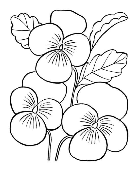 Tranh tô màu bông hoa 6