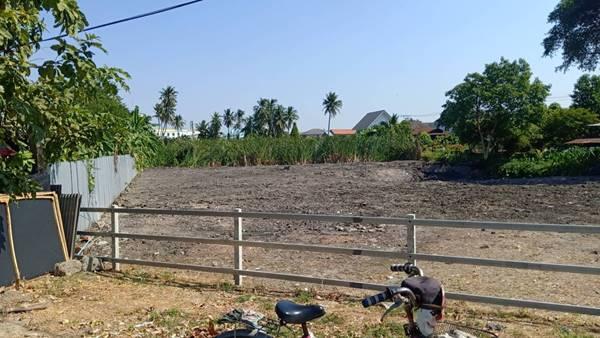 ด่วน!!! ต้องการขายที่ดินเปล่า พื้นที่สวย ต.คูเวียง อ.บางกรวย จ.นนทบุรี โทร 0822234888