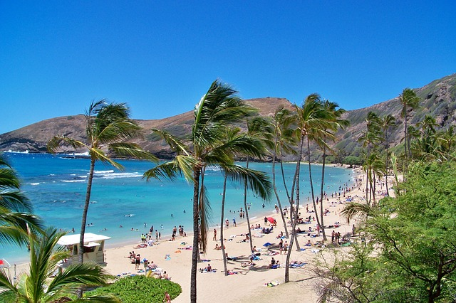 [Hình: hawaii-90931_640%2B%25281%2529.jpg]