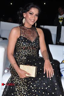 Actress Zabyn Khan Stills in Long Dress at 9th Edition Epicurus Indian Hospitality Awards .COM 0012.JPG