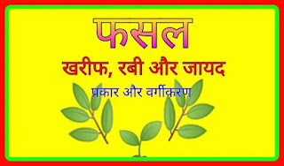भारत में फसल के प्रकार और वर्गीकरण | खरीफ, रबी और जायद फसलों के नाम | kharif rabi fasal crops prakar