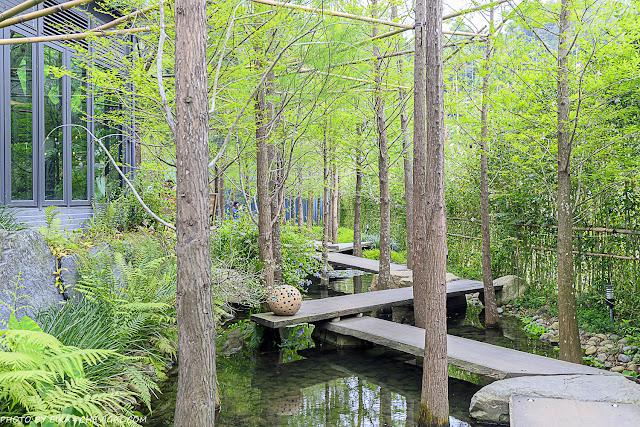 MG 3385 - 鹿寮享自在,台中景觀餐廳推薦,超美玻璃屋結合餐點、下午茶與民宿,還有落羽松水森林步道