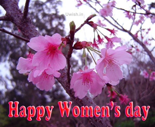 Happy Women's Day with beautiful pink flowers