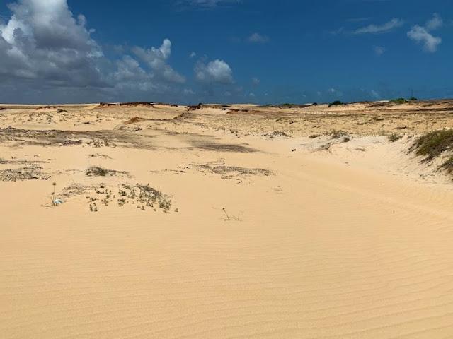 dunas de areia fina e pouca vegetação