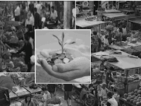 Dampak Aktivitas Manusia terhadap Lingkungan Ekonomi
