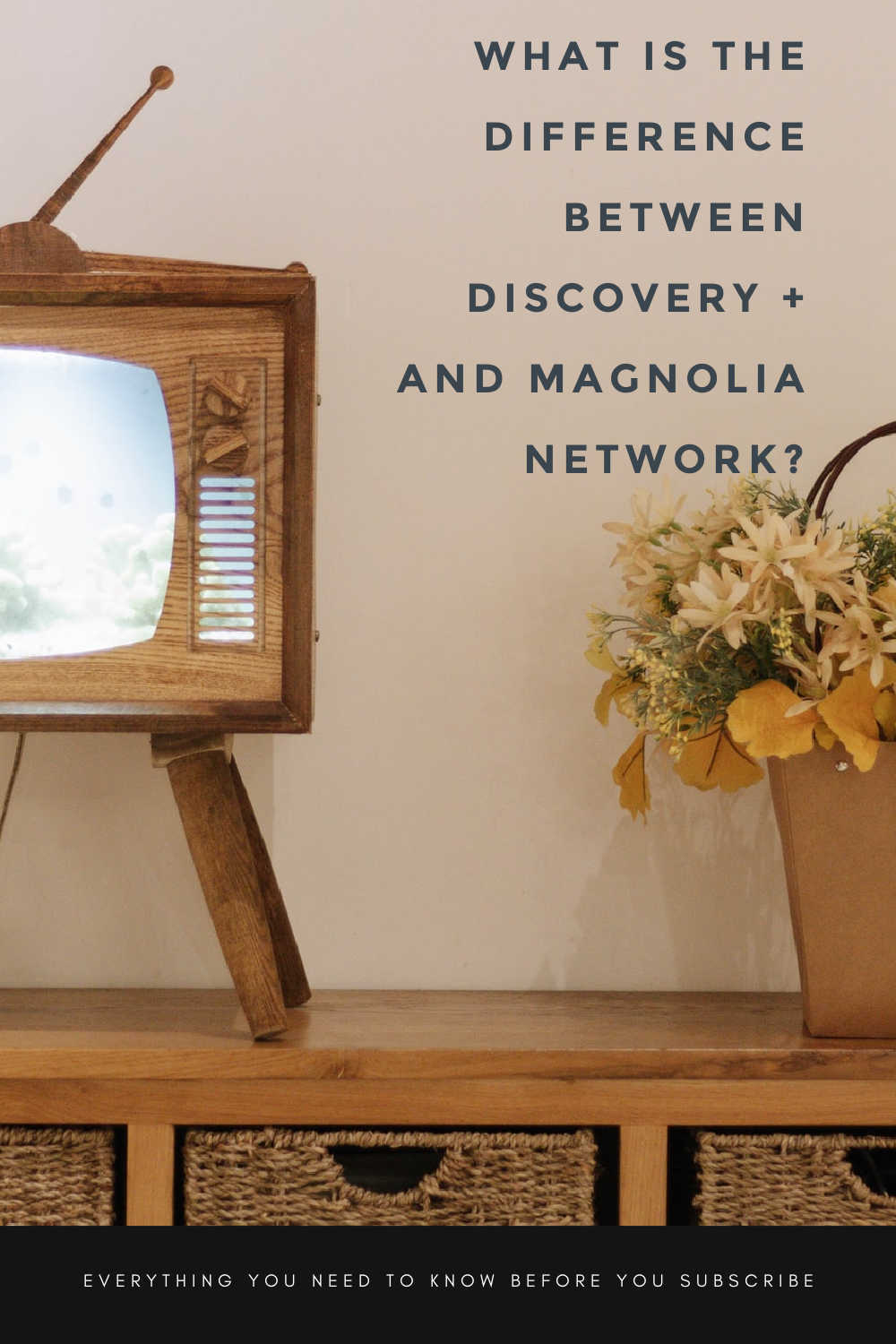 DIFFERENCE BETWEEN MAGNOLIA NETWORK AND DISCOVERY PLUS