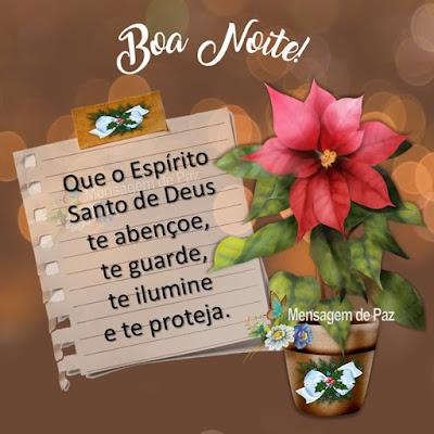 Que o Espírito Santo de Deus te abençoe, te guarde, te ilumine e te proteja. Boa Noite!
