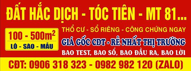 Bán Đất Hắc Dịch Tóc Tiên Châu Pha Phú Mỹ Bà Rịa