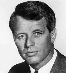 Robert F. Kennedy Assassinator