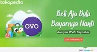 kenapa OVO Paylater Tidak Bisa Diaktifkan