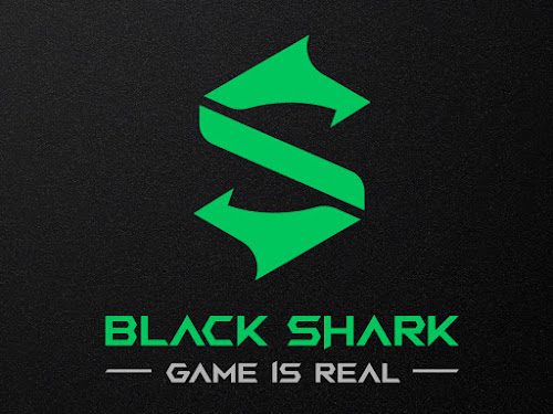 new logo black shark