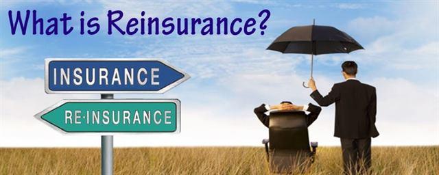 إعادة التأمين-تعريف وأهمية وأنواع إعادة التأمين مع الأمثلة