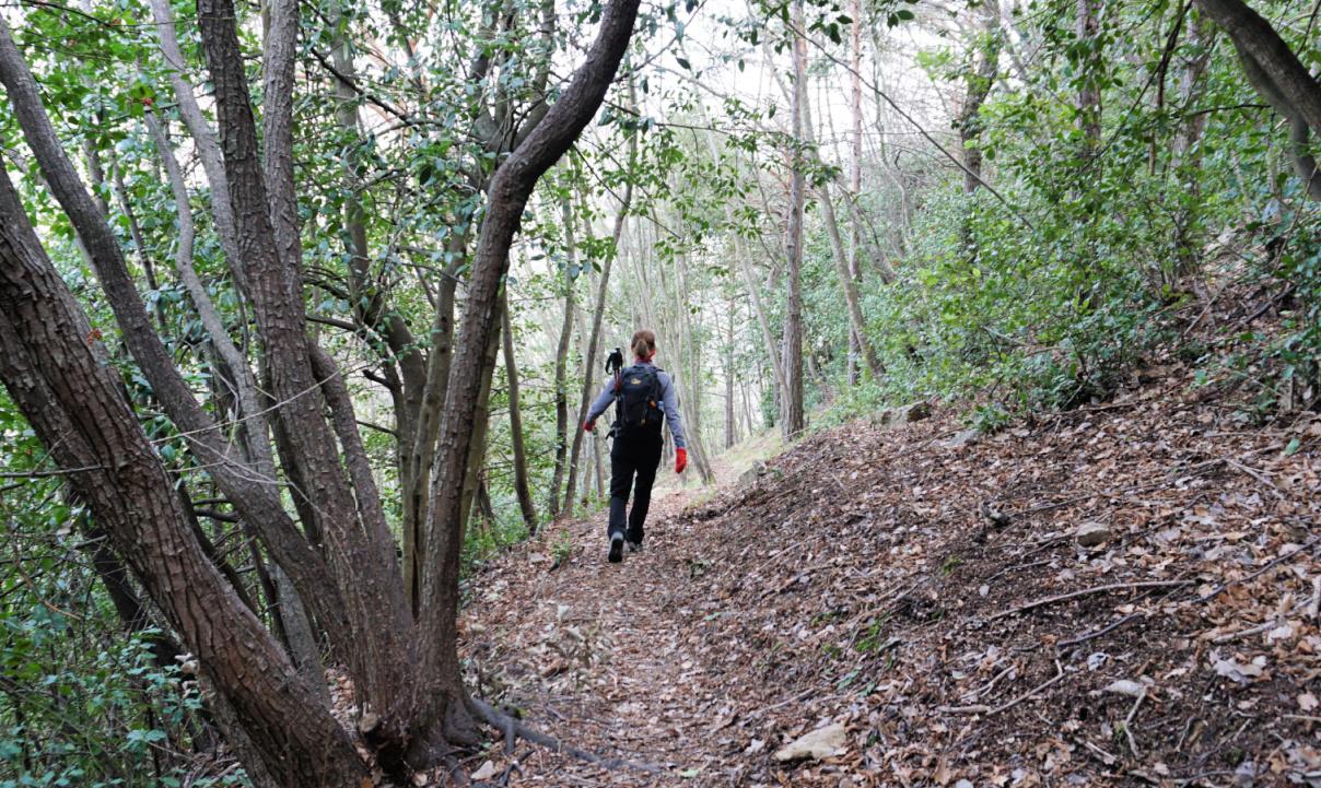 Path to Col des Banquettes