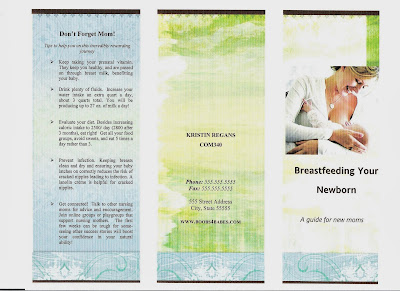 Bloom loft sample brochure for Breastfeeding brochure templates