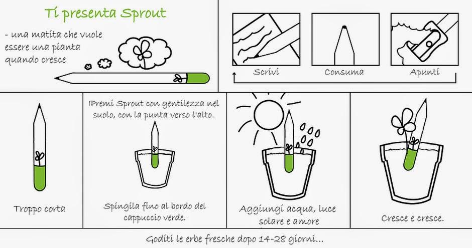 Pianta la tua matita con Sprout!