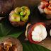 Manfaat Buah Manggis untuk Penderita Penyakit Diabetes