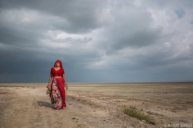 Sambhar Lake, Rajasthan.