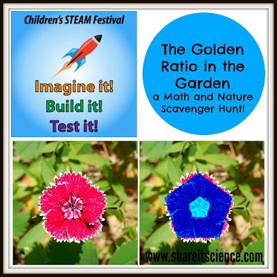 http://www.shareitscience.com/2015/06/childrens-steam-festival-golden-ratio.html