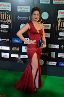 Natasha Nebasha in a Leg Slit Sleeveless Stunning Red Gown at IIFA Utsavam Awards 2017 005.JPG