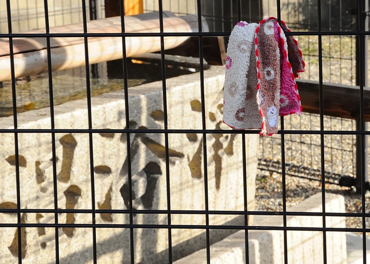 anthropology city essay mexico museum national Description: president john f kennedy (center right) tours the museo nacional de antropología (national museum of anthropology) of the instituto nacional de antropología e historia (national institute of anthropology and history) in mexico city, mexico.
