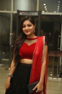 Priyanka Stills (7).jpg