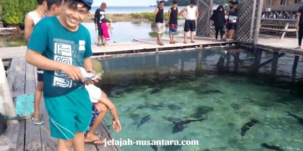 objek wisata penangkaran hiu nusa keramba