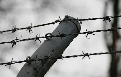 النمسا,سياسي,يميني,أمام,القضاء,بسبب,سوء,معاملة,لاجئين,قاصرين