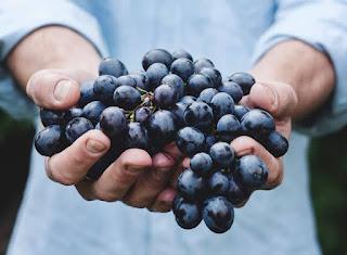 CDMR: 15 May 2020 - Friends Of Jesus Bear Fruit