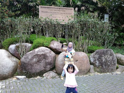 Japanese Village ~ Colmar Tropicale