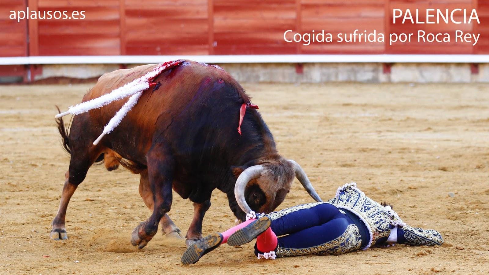 Jaripeo Ranchero Murte Toros De Reparo Wwwimagenesmycom