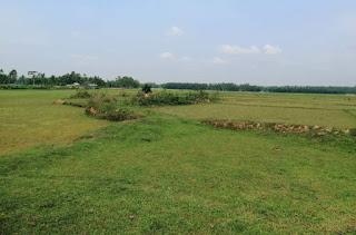 শেরপুরে পানির অভাবে শত শত একর জমিতে বোরো চাষাবাদ হচ্ছে না
