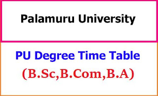 Palamuru University Degree Exam Time Table 2021