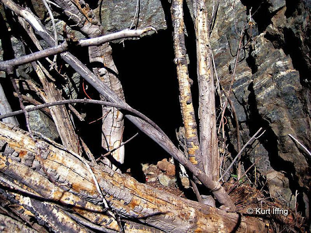 The Horseshoe Annex Mine is more difficult to find than the Horseshoe Mine, but fairly close to it.
