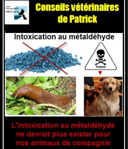Intoxication au métaldéhyde