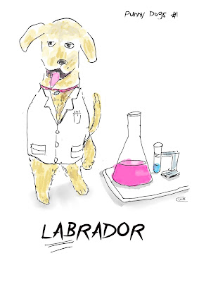 Labrador dog  in a white coat next to a conical flask and test tube.