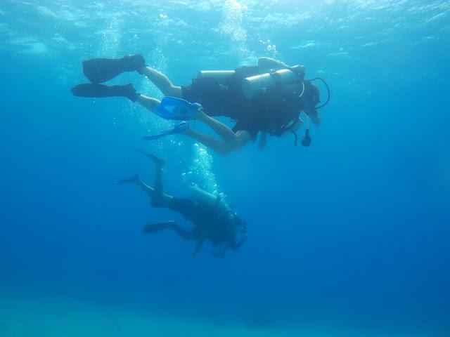 צלילה באילת - למתחילים