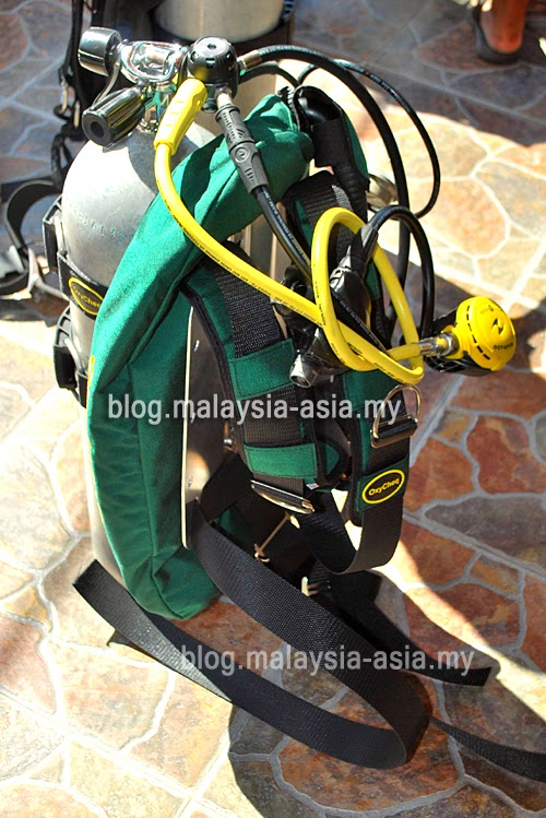 Green Oxycheq BCD