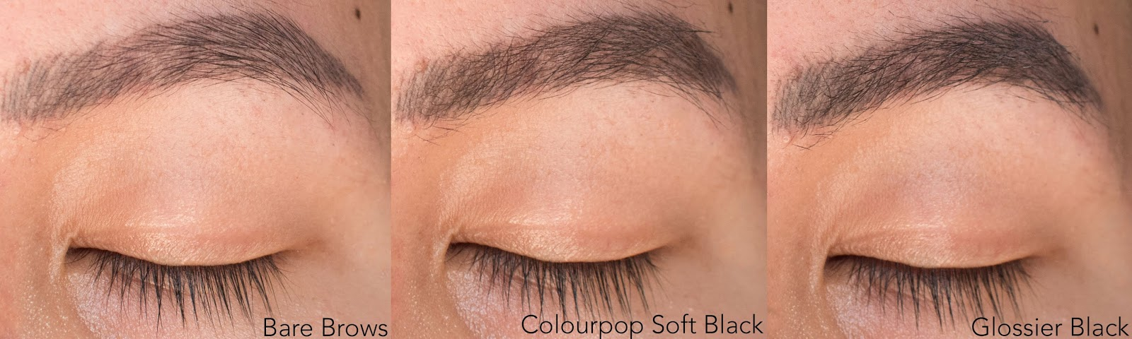 Colourpop Brow Boss Gel vs. Glossier Boy Brow: Comparison, Swatches, and Review