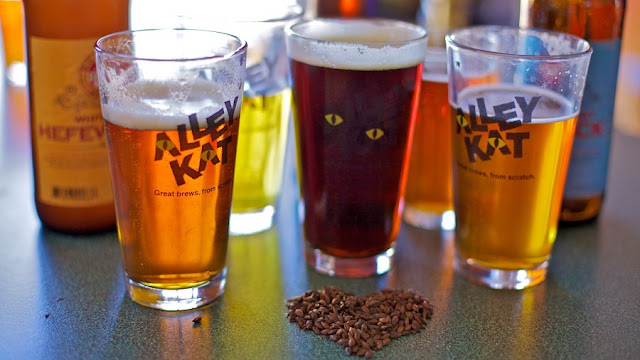 Alley Kat Brewery em Edmonton