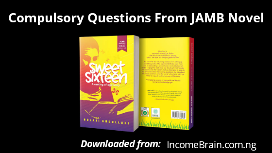 "10 Compulsory Important Questions And Answers From JAMB Novel 2020 ""Sweet Sixteen"" - Jamb.gov.ng"