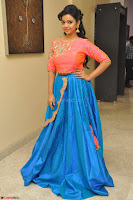 Nithya Shetty in Orange Choli at Kalamandir Foundation 7th anniversary Celebrations ~  Actress Galleries 080.JPG