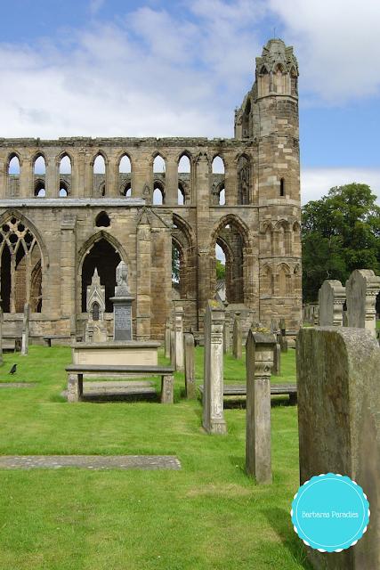 Lesetipps für Schottland-Fans - 7 Buchtipps, die euch nach Schottland entführen - Kathedrale in Elgin