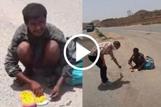 """"""".... अन त्याने खाल्ले रस्त्यावर मृत पडलेल्या जनावराचे मांस"""", व्हायरल व्हिडीओ    Marathi news"""